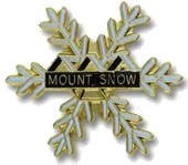 Ski resort pins